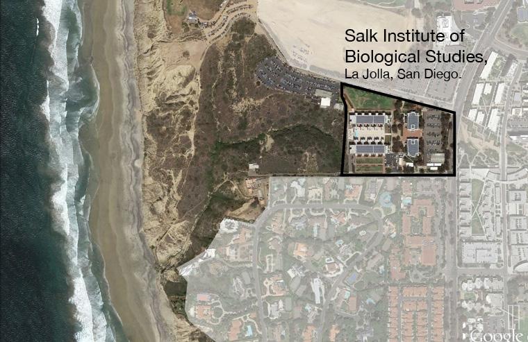 Salk Institute Louis Kahn หลุยส์ คาห์น